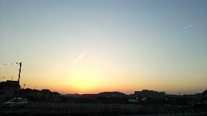 DSC_1418.JPG